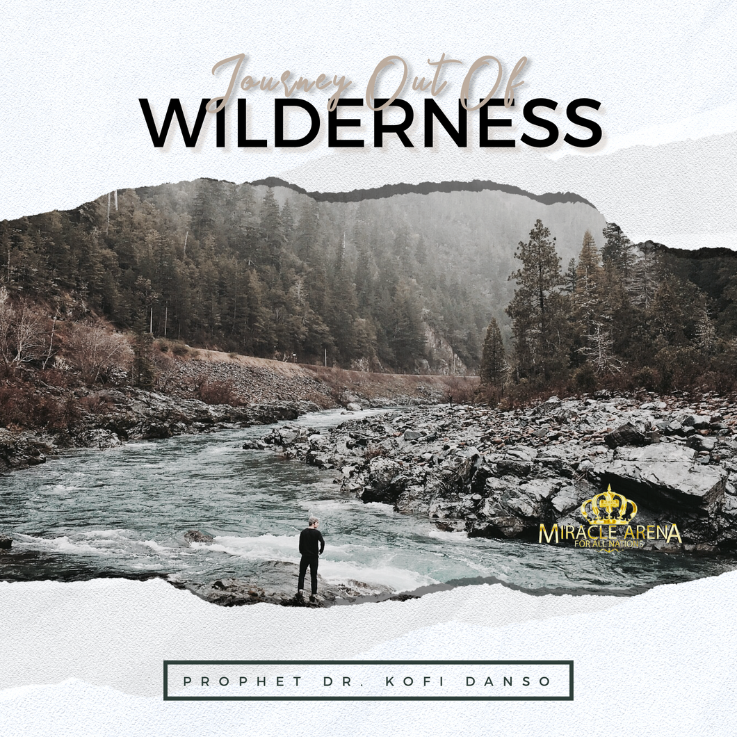 DD - Journey Out Of Wilderness - Miracle Arena Bookstore
