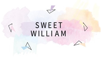 sweet william vintage