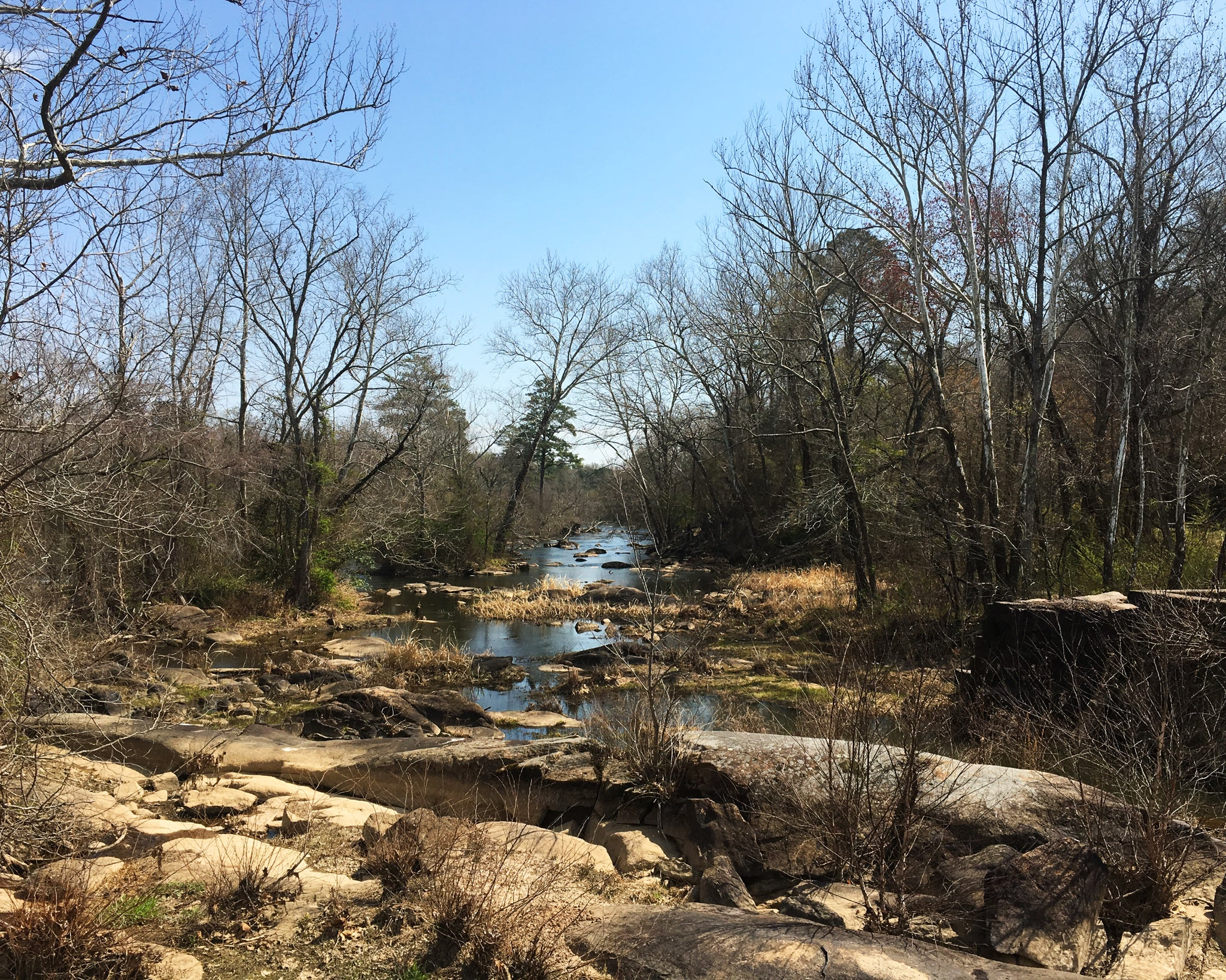 Appomattox River Trail Creek