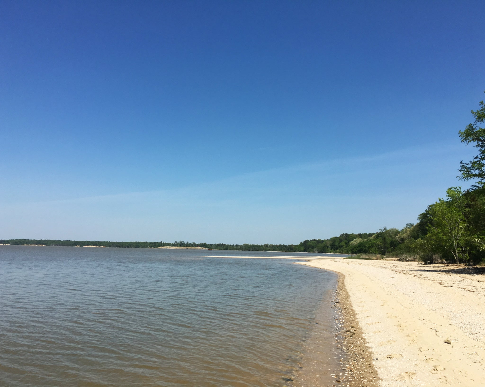 Chippokes State Park Beach