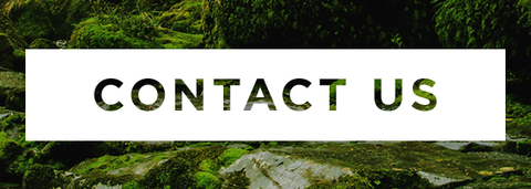Contact Us head with West Coast bush background