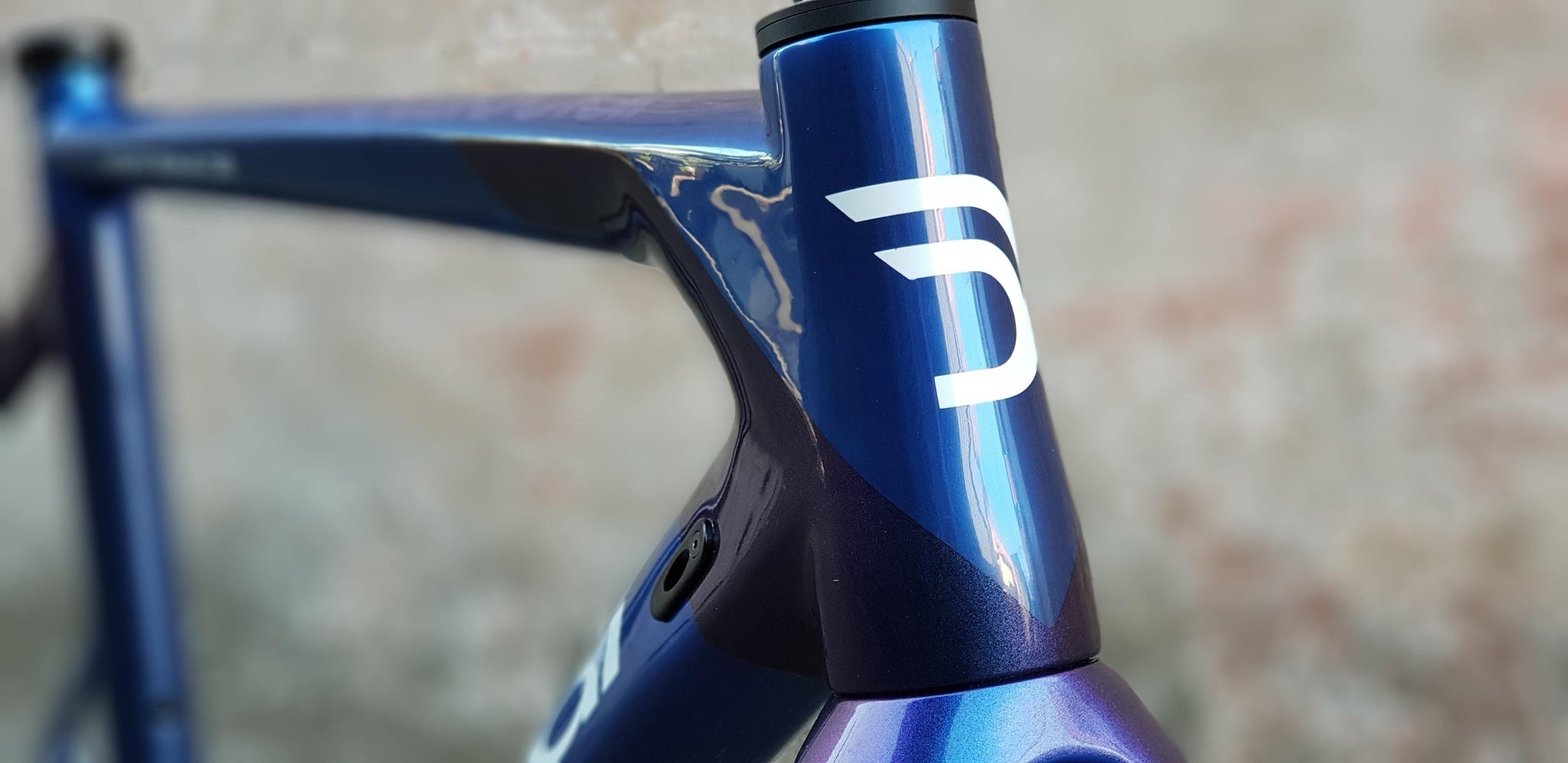 DEDACCIAI DISC BRAKE FRAME, VERTIGINE IN CUSTOM COLOUR