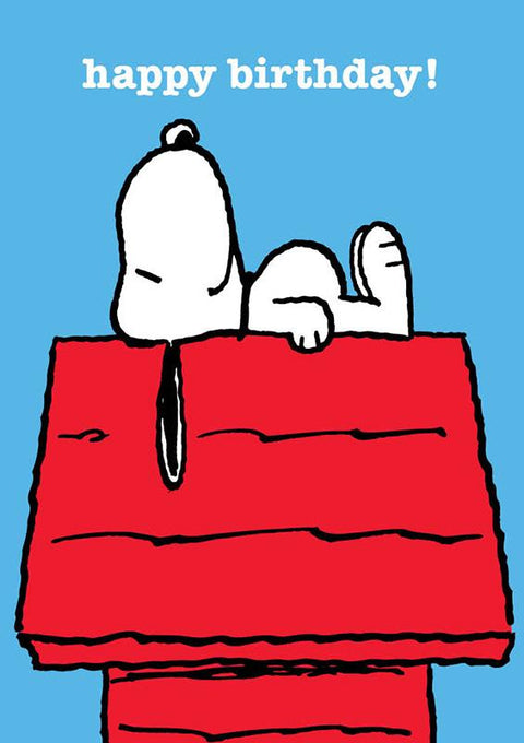 Snoopy On His Kennel
