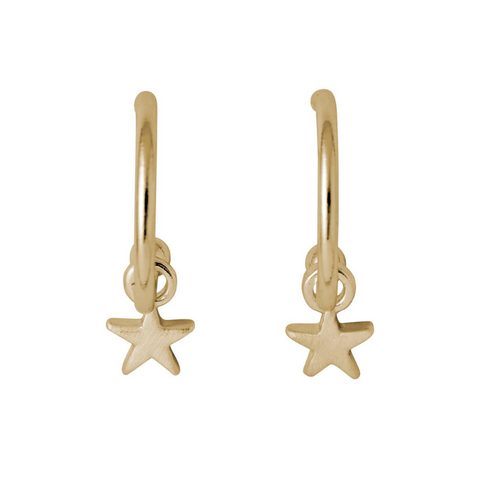 Ava Star Pendant Gold Plated Earrings