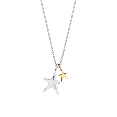 Estella Bartlett Double Star Gold and Silver Plated Necklace