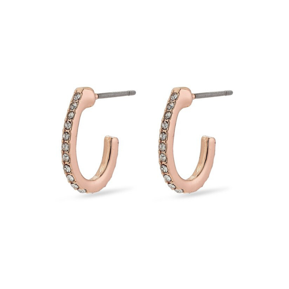 Delia Rose Gold Plated Crystal Hoop Earrings