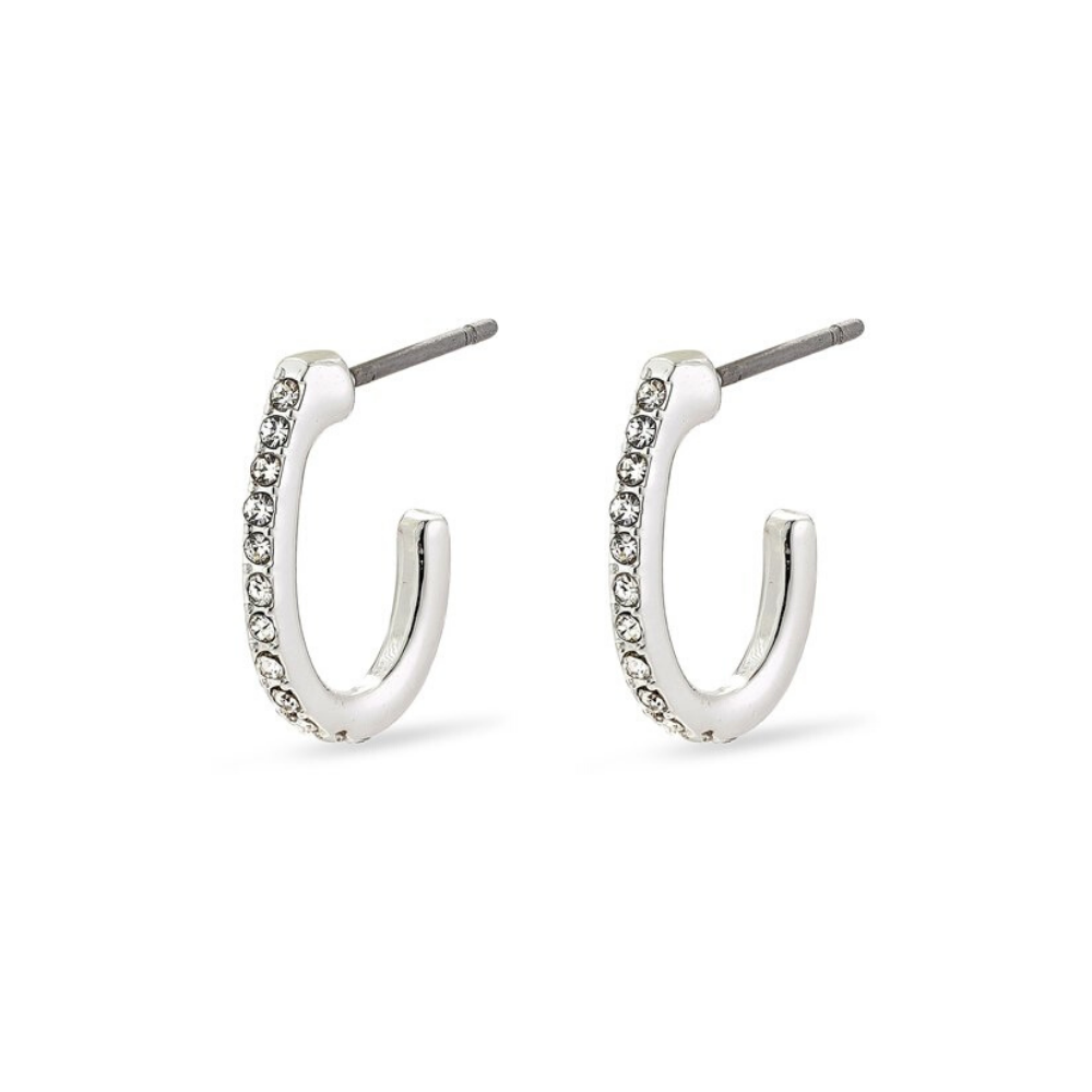 Delia Silver Plated Crystal Hoop Earrings
