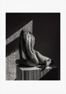 Torso - TH2017-2180, [product_type) - Thomas Holm Photography - CommandoArt.com
