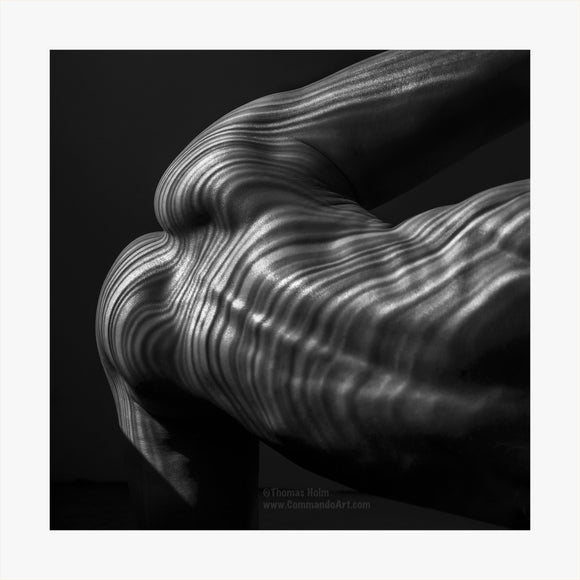 TH2019-2882 - Gluteus Maximus Abstractus, [product_type) - Thomas Holm Photography - CommandoArt.com