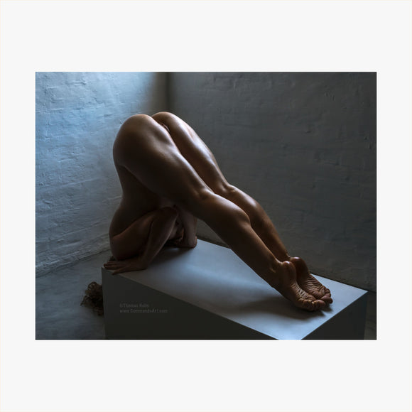 TH2019-2977 - Legs Galore, [product_type) - Thomas Holm Photography - CommandoArt.com