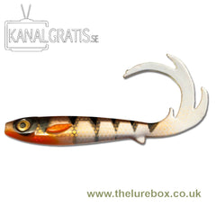Flatnose Dragon 27cm - The Lure Box
