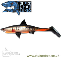 Kanalgratis Shark Shad 20cm - The Lure Box