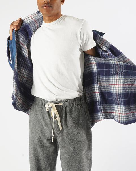 flannel reversible check model changing