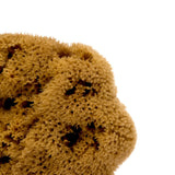 Eligo - Natural Sponge Face  (Soap) - 2