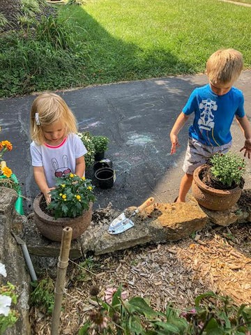 kids helping plant flowers mums during fall helping mom activity