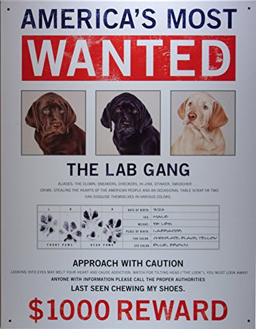 Wanted The Lab Gang Tin Sign 13 x 16in- Made In The USA
