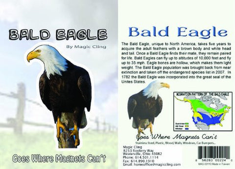Bald Eagle Wall Decal - Realistic Bald Eagle Decor - Window Car Fridge Wall Sticker