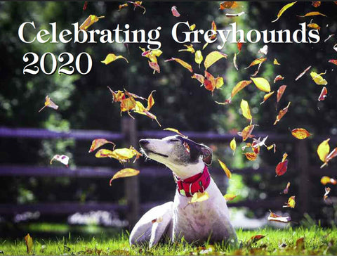 Celebrating Greyhounds - 2020 Wall Calendar