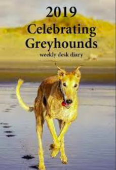 Celebrating Greyhounds - 2019 Desk Calendar