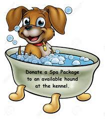 Donate a Spa Day package to an available hound at the GPI kennel - Tax Deductible ID# 82-0434711