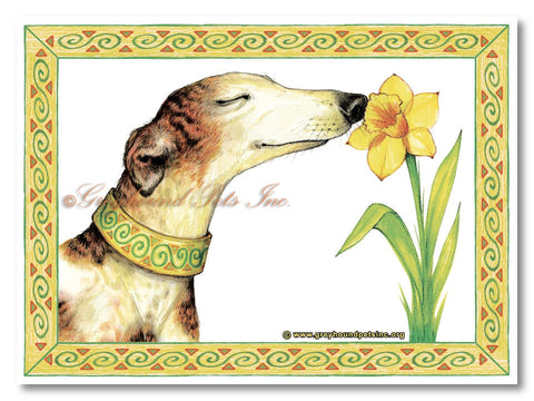 Adult Long Sleeve T-Shirt - Design: Daffodil - Adopt A Greyhound