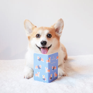 Sneakers the Corgi Pocket Notebook