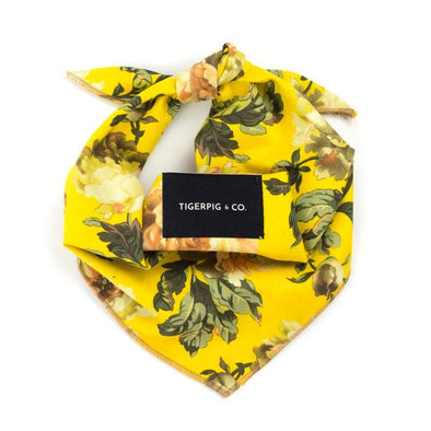 Pet Bandana - Harvey Yellow