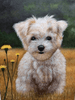 9″ x 9″ Custom Pet Oil Painting