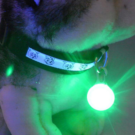 LED Flashing Safety Collar Pendant