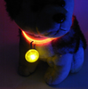 LED Flashing Safety Collar Pendant - True Best Friend