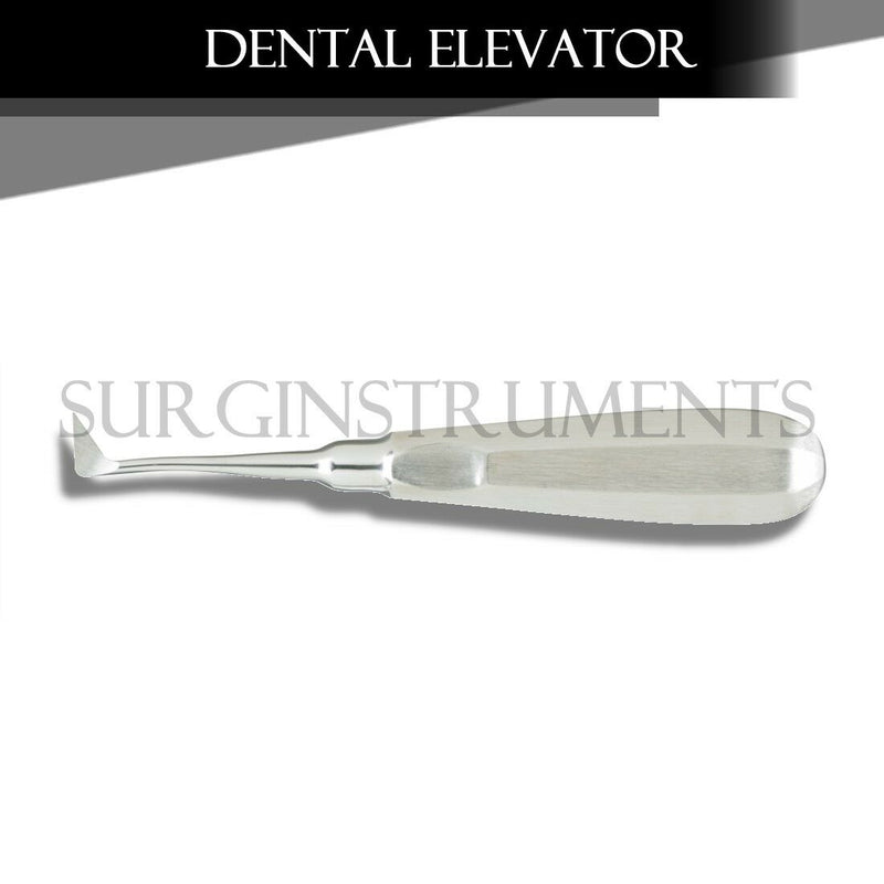 Dental Elevator Seldin #1L Surgical Denture Instruments