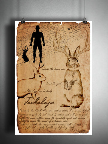 Jackalope cryptid art, bestiary cryptozoology science journal art, monsters and folklore