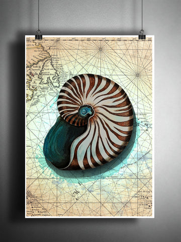 Nautilus splatter art print, watercolor splatter sea shell art, beach decor, world map art