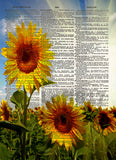 Sunflowers art, Sunflower art print, Sunflower wall art -  - 1