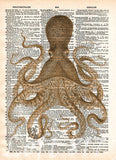 Octopus wall art, vintage octopus drawing, dictionary print, book page art -  - 5