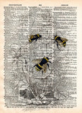 Bumblebee illustration,1800's bee wall art,  dictionary page book art print -  - 1