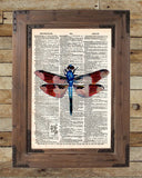 Dragonfly art, illustration 1800's,  dictionary page art -  - 2