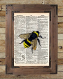 Bumblebee insect drawing, Bee art print,  dictionary page book art print -  - 2