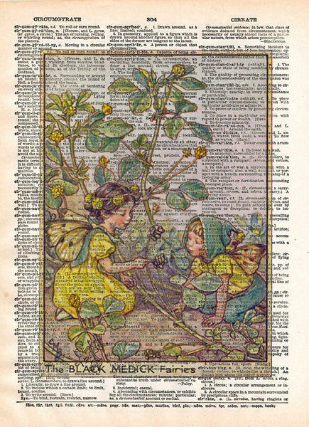 Vintage Flower Fairy art, Black medick Fair, Fairy art print, Dictionary print art -  - 1