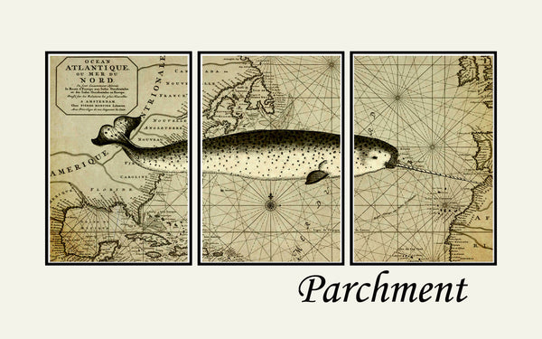 Narwhal art print, Nautical decor, map art, world map wall art, Vintage narwhal print
