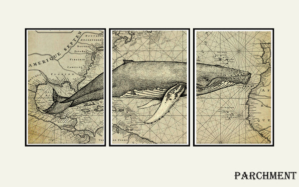 Whale art print, Nautical decor, map art, world map wall art, whale art Tryptich
