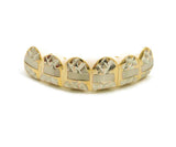 Hip Hop Rapper's Style Dental Grillz in Gold-Tone, FHL1C3G