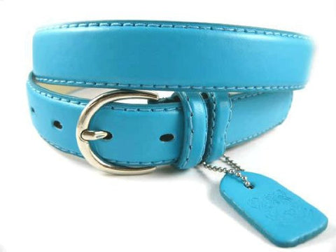 NEW Ladies Basic Trendy Faux Leather Thin Belt Turquoise