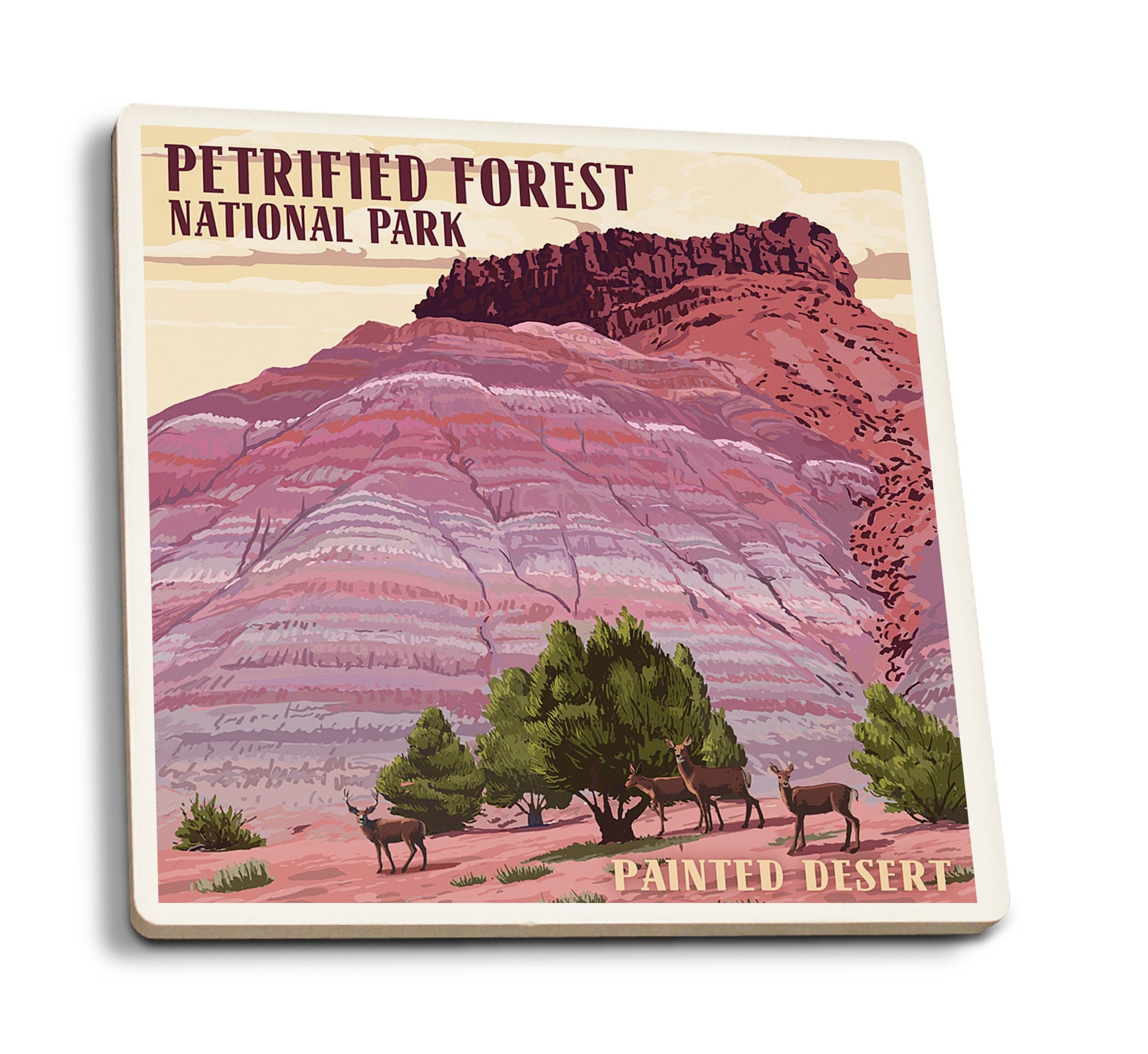 Coaster (Petrified Forest National Park, Arizona - Painted Desert - Lantern Press Artwork) Coaster Nightingale Boutique Coaster Pack