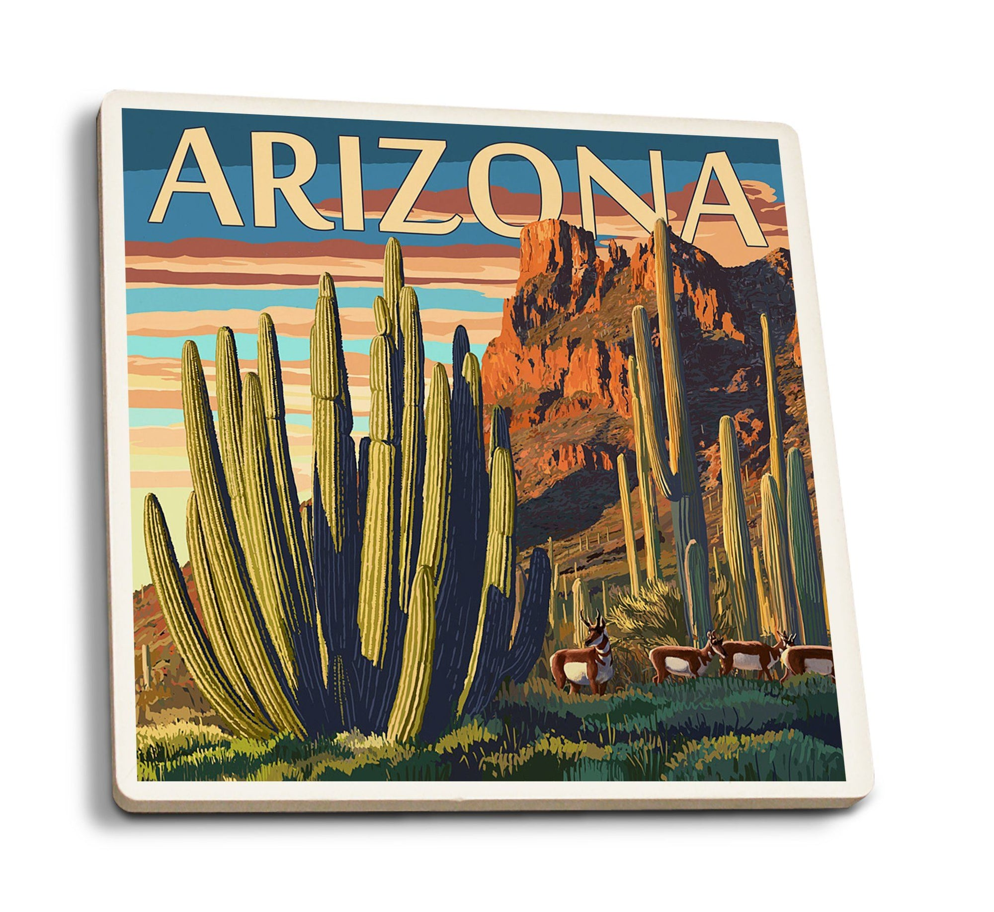 Coasters (Arizona, Organ Pipe Cactus, Lantern Press Artwork) Lifestyle-Coaster Lantern Press