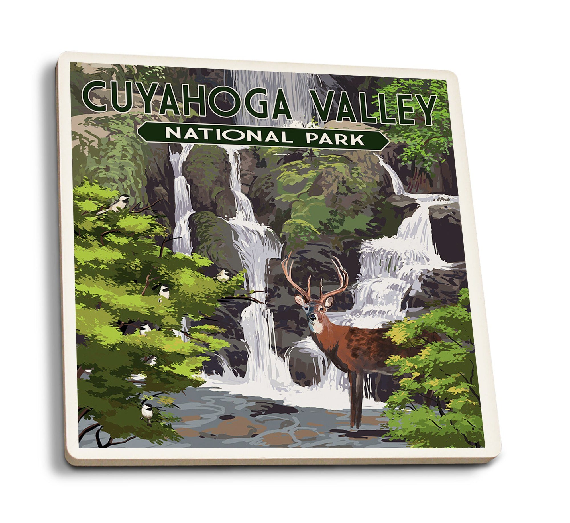 Coasters (Cuyahoga Valley National Park, Ohio, Deer and Falls, Painterly Series, Lantern Press Artwork) Lifestyle-Coaster Lantern Press