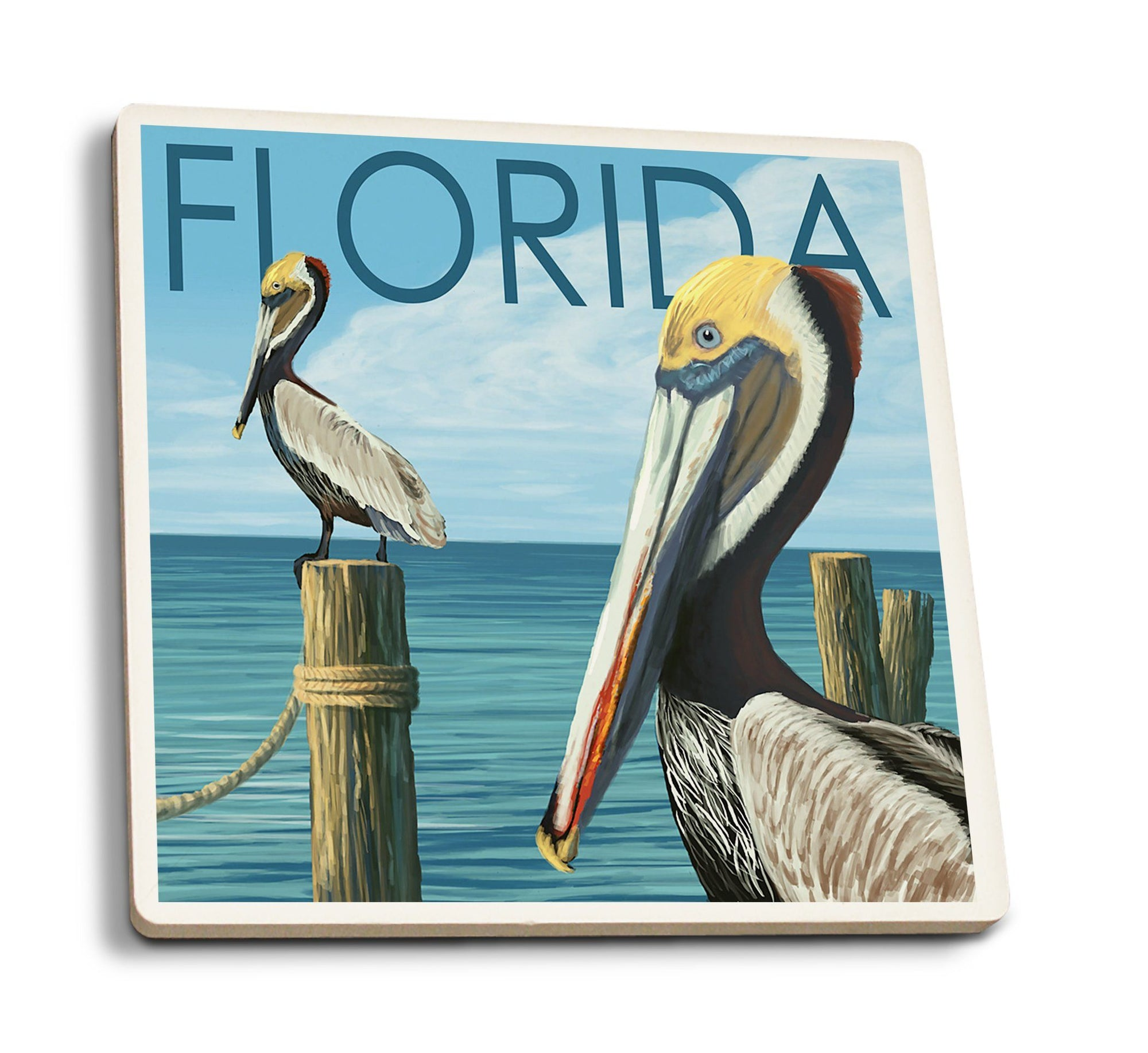 Coasters (Florida, Brown Pelicans, Lantern Press Artwork) Lifestyle-Coaster Lantern Press