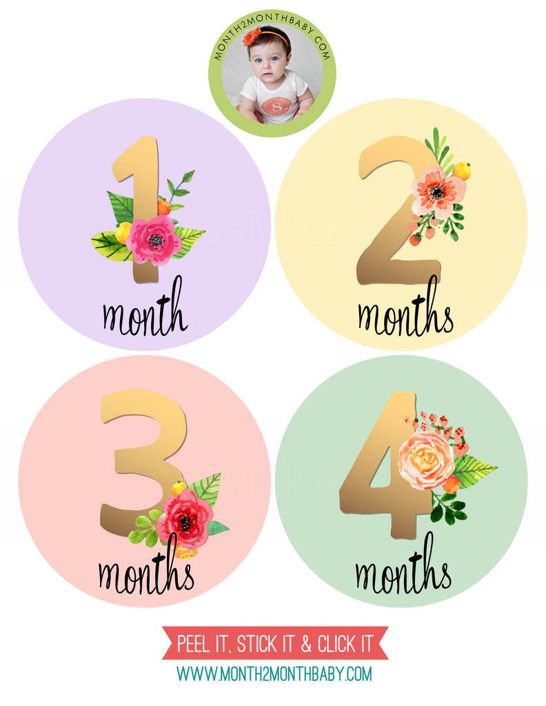 Set of 12 Month 2 Month Baby Golden Floral Collection Monthly Stickers