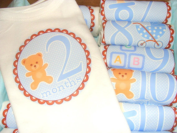 Set of 12 Month 2 Month Baby Milestone Teddy Bear Boy Collection