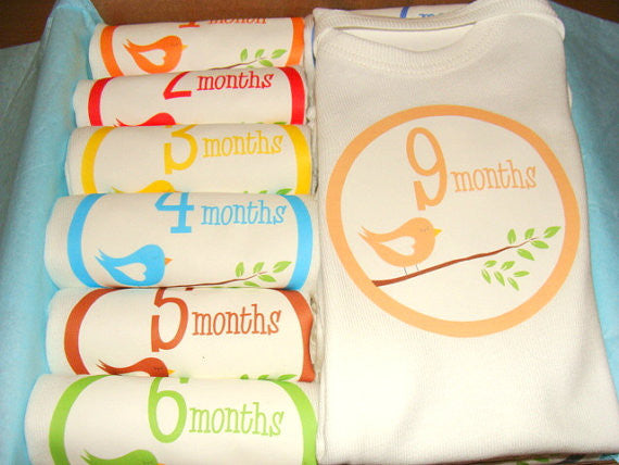Set of 12 Month 2 Month Baby Milestone Sleepy Bird Collection